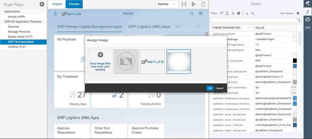 SAP Fiori Theme Designer set the background
